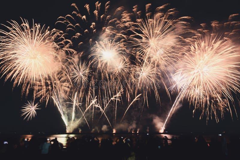 Les spectateurs observent les feux d'artifice colorés dans le ciel nocturne sur la plage images libres de droits