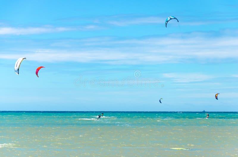Les sports multiples équipent le vol sur leur embarquement de cerf-volant photo libre de droits