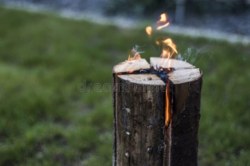 Les Suédois incendient la souche brûlante du feu du plat pour le repos ou pour faire cuire l'humeur froide de nourriture images libres de droits