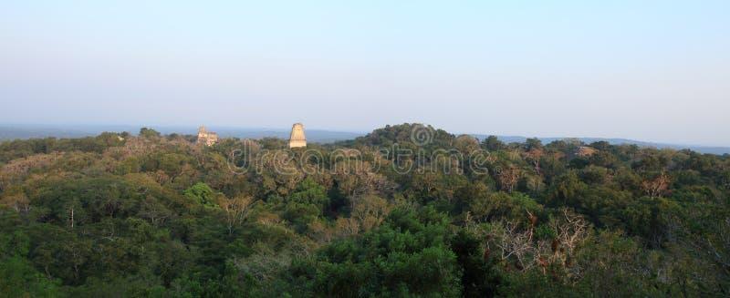 Les temples maya antiques se lèvent au-dessus de l'auvent de jungle - Tikal, Guatemala photographie stock libre de droits