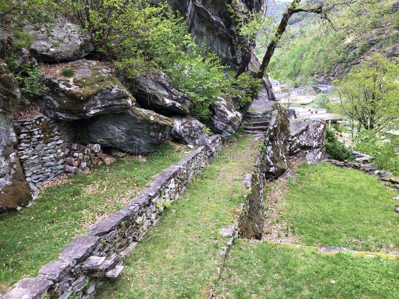 Les terrasses le site de Sott Piodau, Bignasco image libre de droits