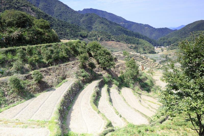 Les terrasses ordonnées sur la montagne huangling, adobe RVB image stock