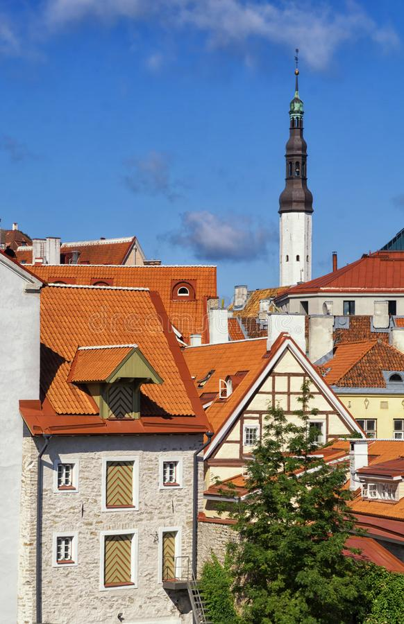Les toits rouges de la vieille ville de Tallinn dans le jour d'été ensoleillé Tallin est la ville capitale et plus grande de l'Es photos stock