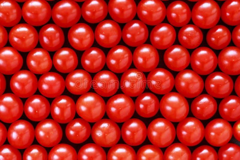Les tomates rouges image libre de droits
