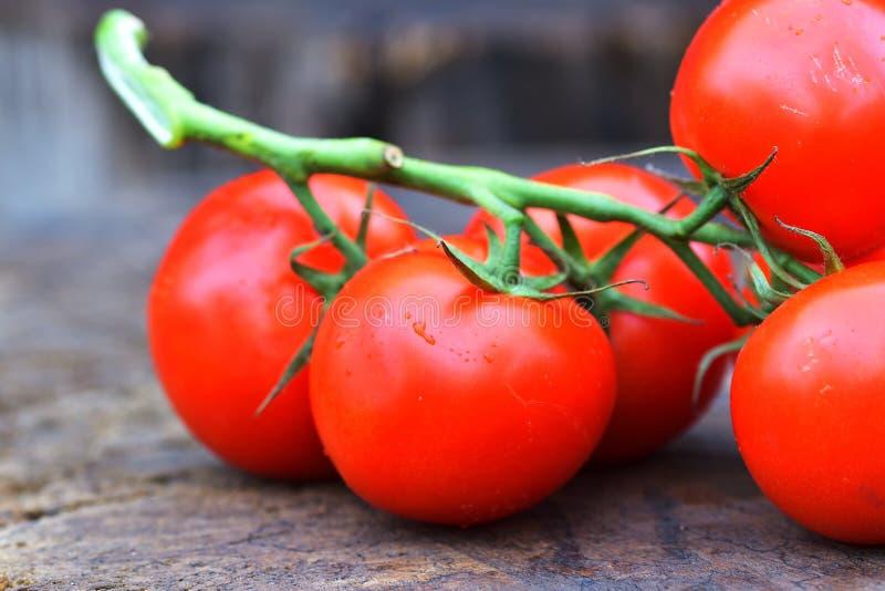 Les tomates rouges savoureuses mûres Tomates organiques du marché de village Tomates fraîches Fond qualitatif des tomates images libres de droits