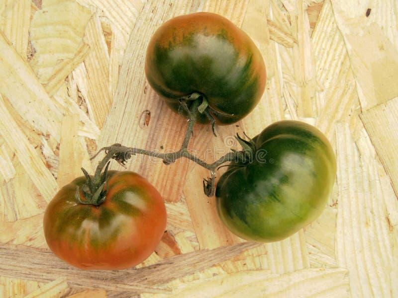 Les tomates sur une table colore en revanche le rouge et le vert image libre de droits