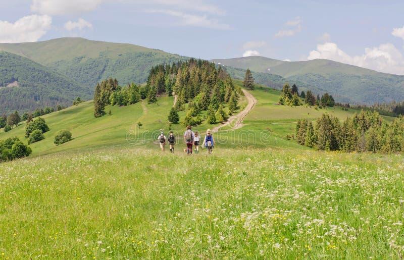 Les touristes dans le petit groupe dans le trekking voyagent sur la gamme accidentée verte des montagnes carpathiennes photo stock