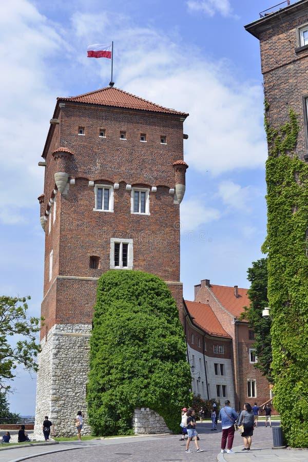 Les touristes flânent environ un des tours de château de Wawel image stock