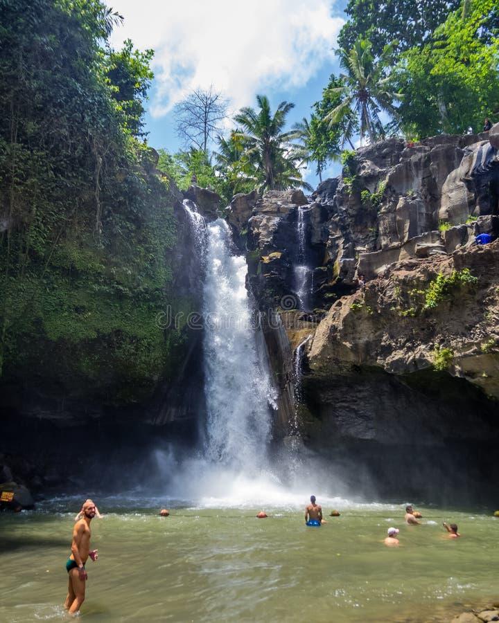 Les touristes nagent dans la cascade de Tegenungan dans Ubud, Bali, Indonésie photos libres de droits