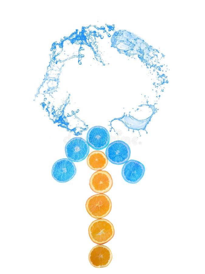 Les tranches d'orange arrangent dans la forme de flèche éclaboussée avec de l'eau sur le fond blanc photo libre de droits