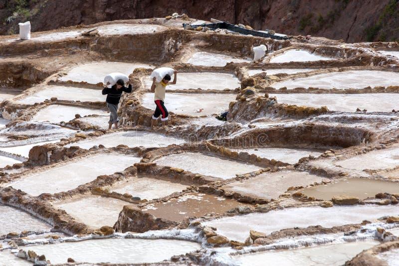 Les travailleurs au sel de Maras s'accumule au Pérou image libre de droits
