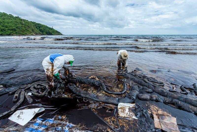Les travailleurs emploient les sachets en plastique images libres de droits
