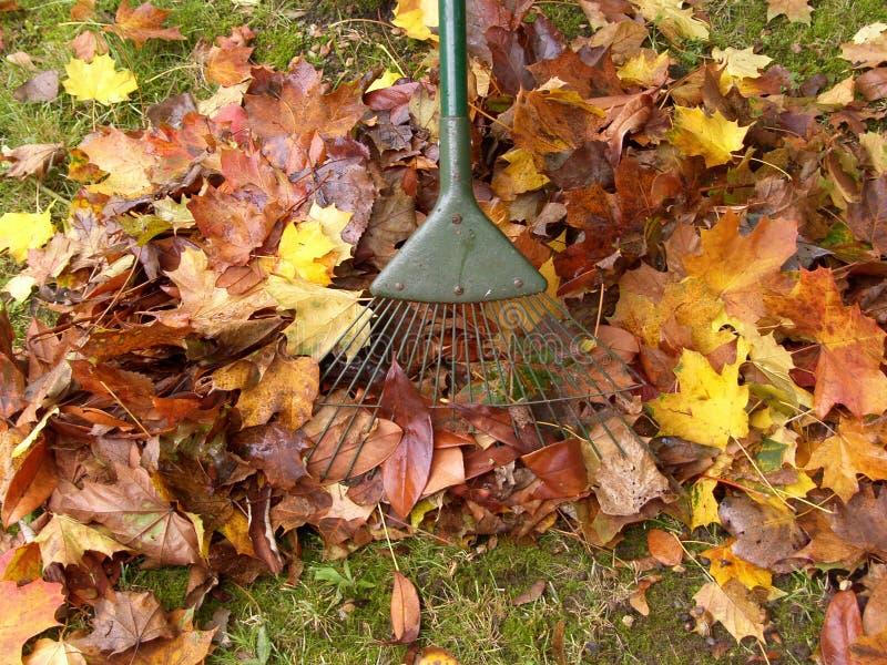 Les travaux de jardinage photo libre de droits