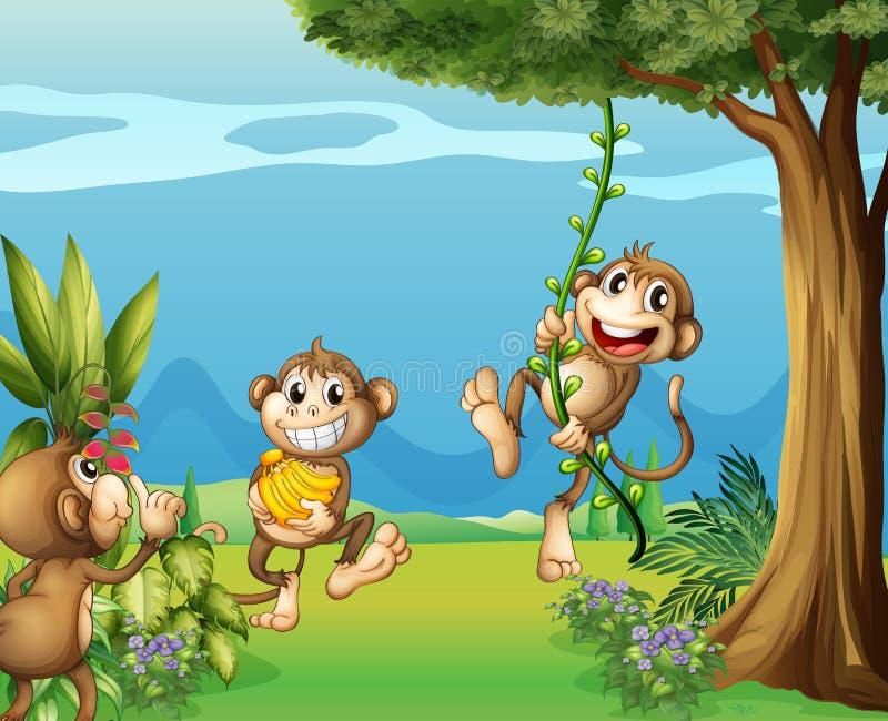Les trois singes aux collines illustration stock