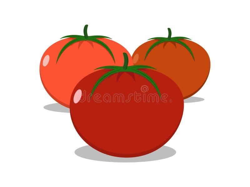 Les trois tomates rouges de tons sur le fond blanc illustration libre de droits