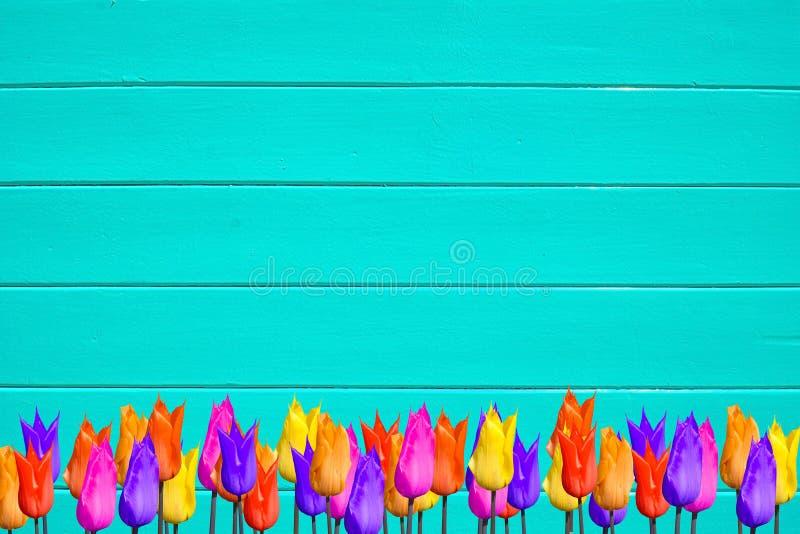 Les tulipes colorées lumineuses sur la turquoise ont peint le fond en bois images stock