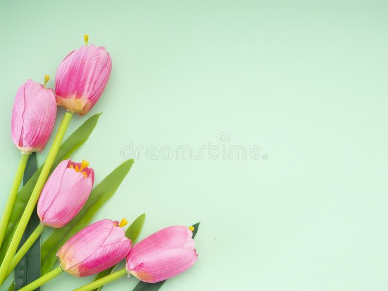 Les tulipes roses le fond de Livre vert photo libre de droits