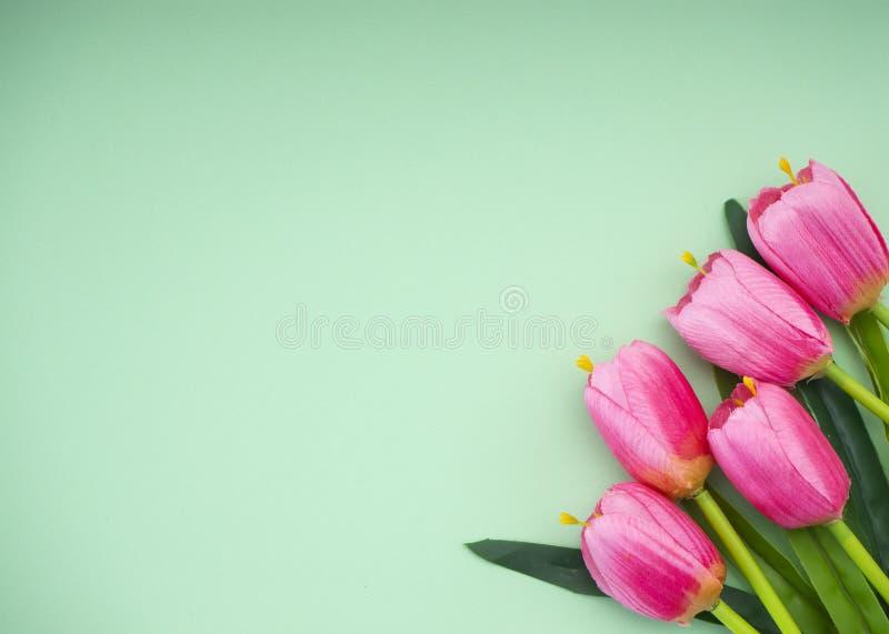 Les tulipes roses le fond de Livre vert images stock
