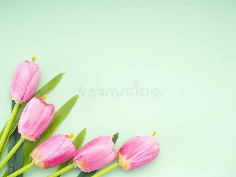 Les tulipes roses le fond de Livre vert photos stock