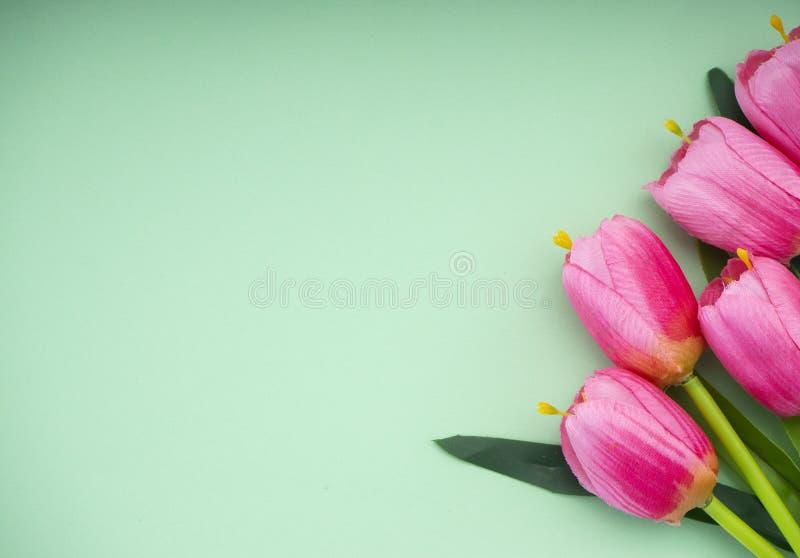 Les tulipes roses le fond de Livre vert photos libres de droits