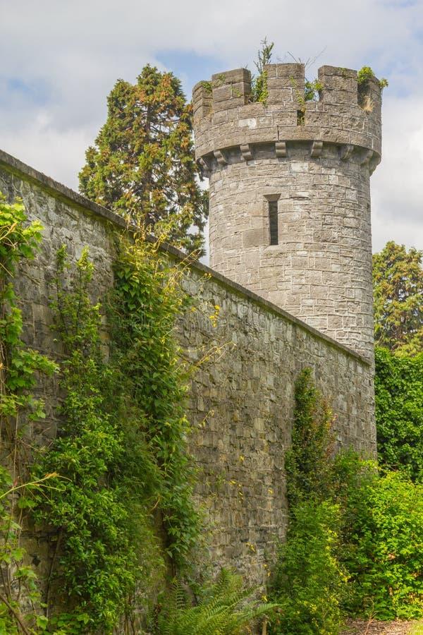 Les usines, l'herbe et le château dominent dans le jardin botanique photo libre de droits