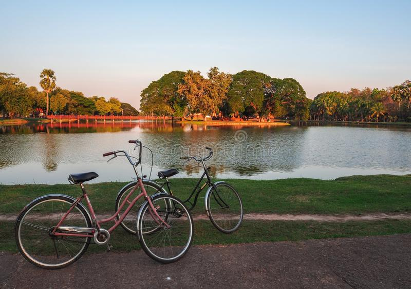 Les vélos sont en parc images libres de droits