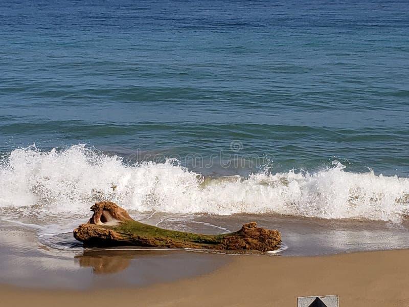Les vagues photographie stock