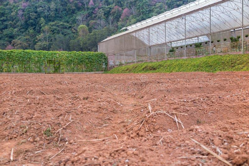 Les Veggies logent et ont préparé le jardin de terre photographie stock libre de droits