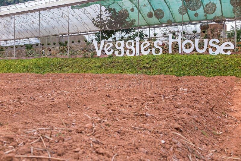 Les Veggies logent et ont préparé le jardin de terre image stock