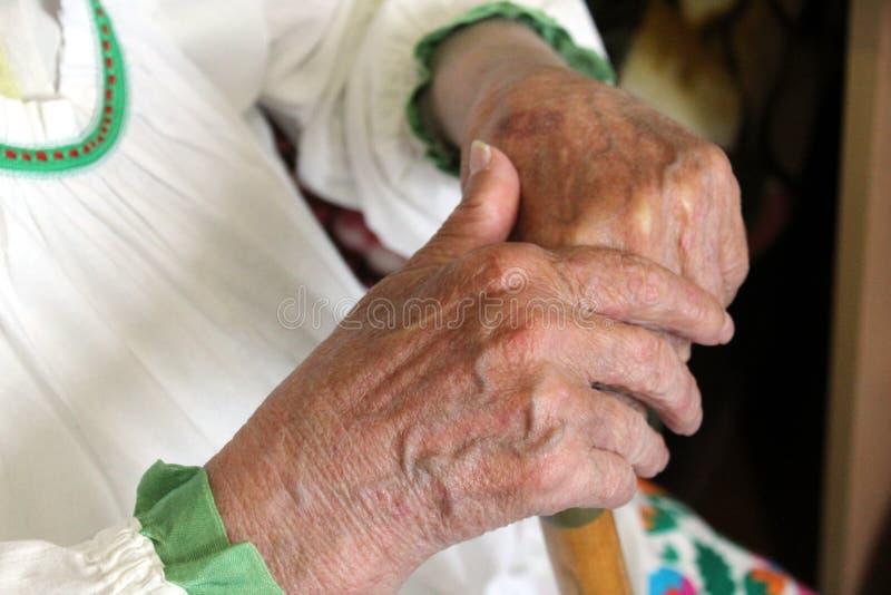 Les vieilles mains froissées femelles tiennent la canne en bois photos stock