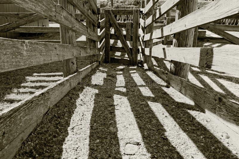 Les vieux bétail en bois chutent sur un ranch photo libre de droits