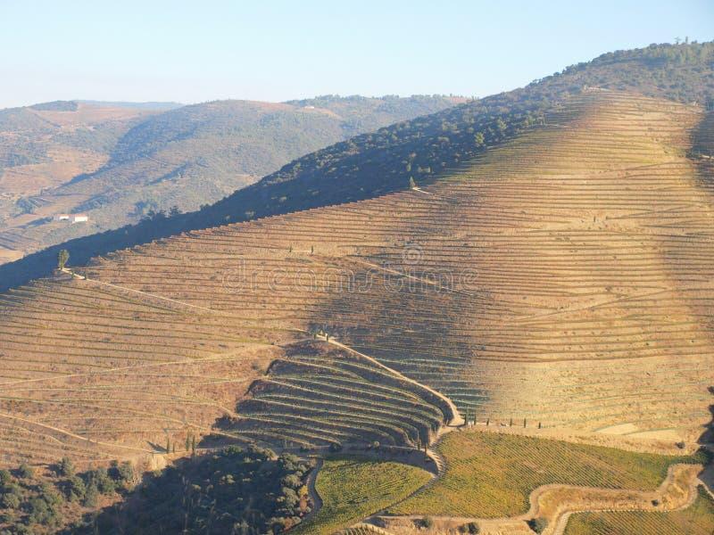 Les vignobles de région de vin de rivière de Douro aménagent le Portugal en parc images stock