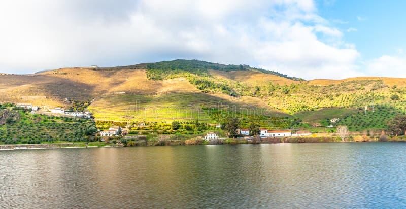Les vignobles de rive de vallée de Douro aménagent le Portugal en parc images stock