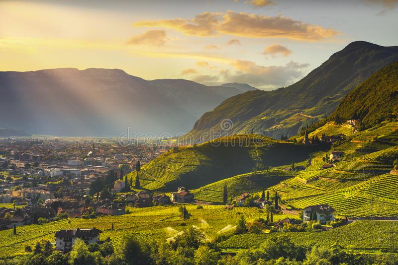 Les vignobles regardent en Santa Maddalena Bolzano Trentino Alto Adige Sud Tyrol, Italie photos stock