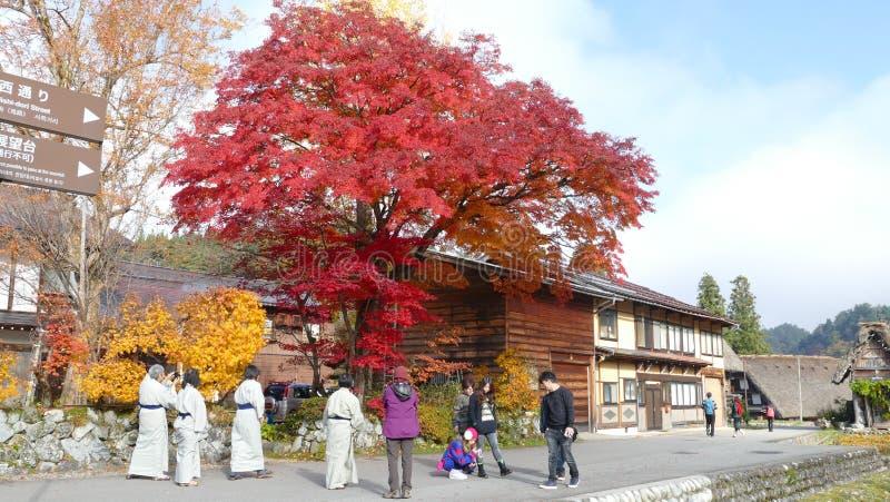 Les villages historiques de Shirakawa-gand Gokayama photographie stock libre de droits