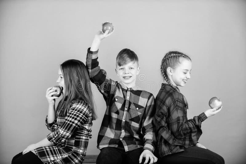 Les vitamines sont importantes pour la sant? enfantile Peu enfants mordant les pommes rouges de vitamine Les petits enfants ont p image libre de droits