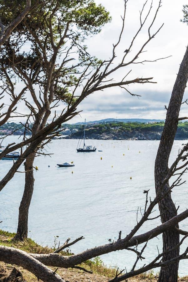 Les yachts et les voiliers ont amarré dans Costa Brava, Catalogne, Espagne photo libre de droits