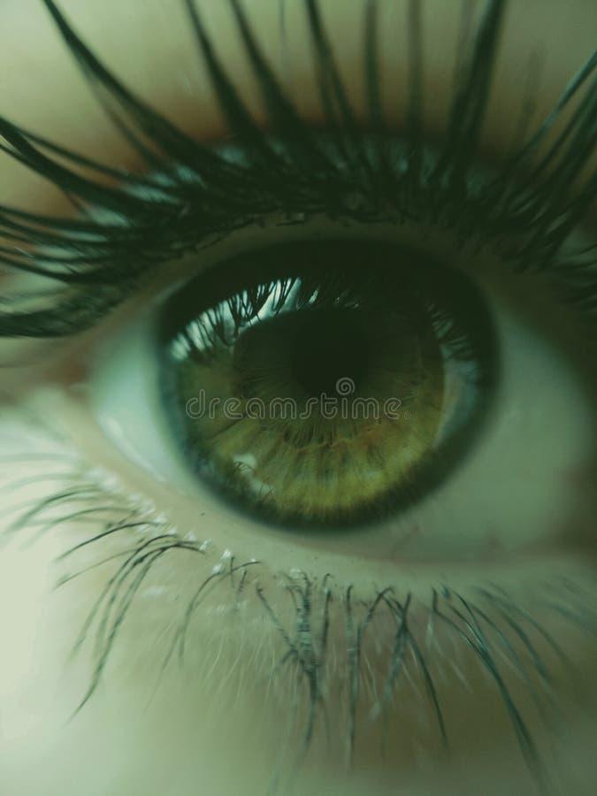 Les yeux de woomans image libre de droits