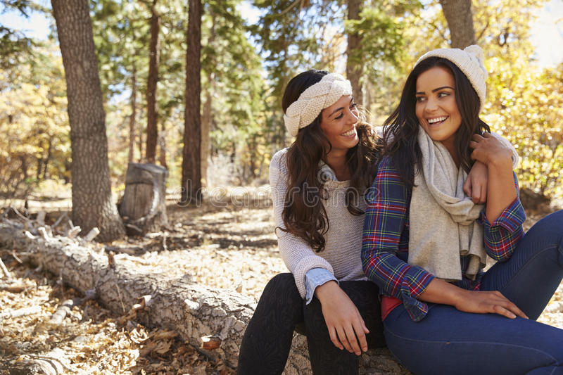 Lesbian couple sitting in a forest, looking at each other stock photography