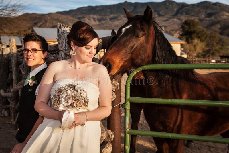 Lesbisk brud med partnern och hästen royaltyfria foton