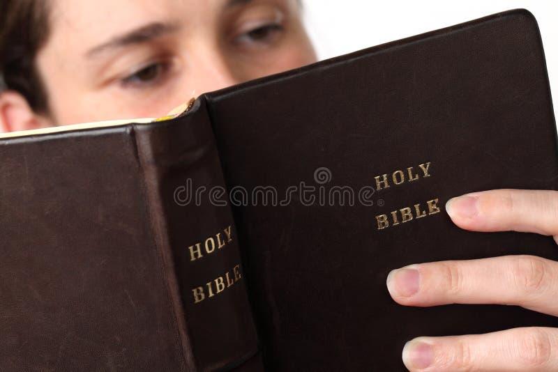 Lesen der Bibel stockfotografie