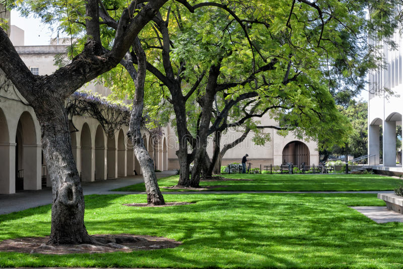 Lesisty gazon na kampusie Caltech w Pasadena, Kalifornia. obrazy royalty free