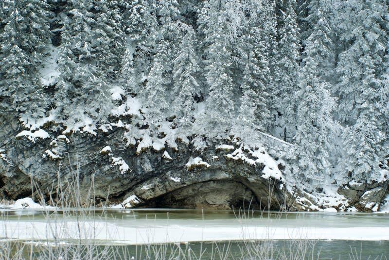 Lesisty skalisty brzeg zamarznięta rzeka obrazy stock
