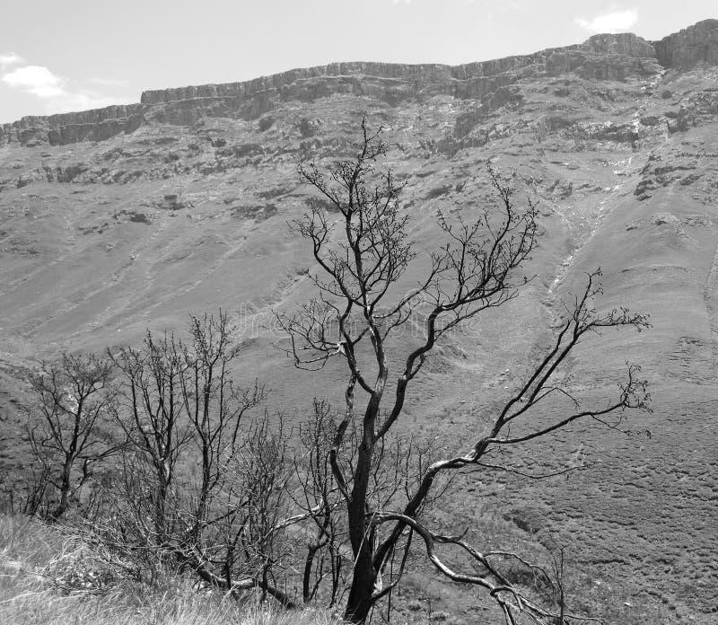 Lesotho, officieel het Koninkrijk van het landschap van Lesotho royalty-vrije stock foto's