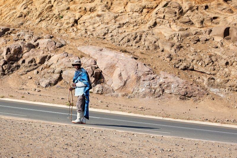 Lesotho vuxen le afrikansk herdeman i nationell ullfiltklänning och hatt som går på lantliga höga berg, Drakensberg arkivfoton