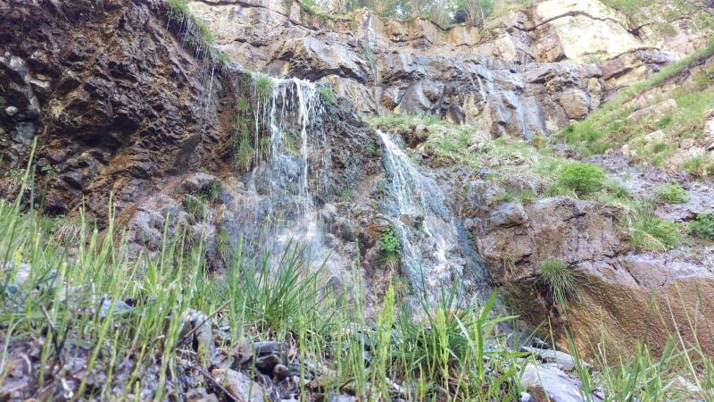 Lesser Lost Creek Falls Spring fotografering för bildbyråer