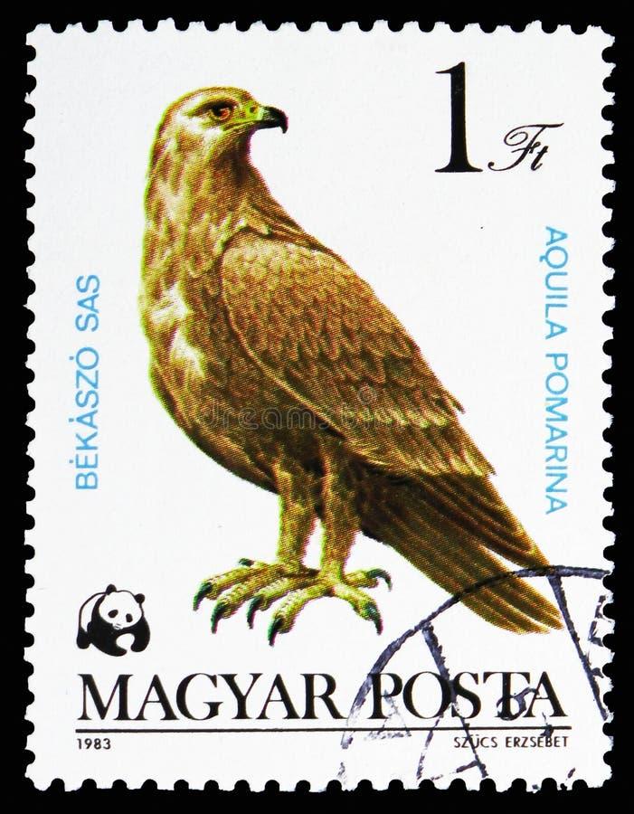 Lesser Spotted Eagle (Aquila pomarina), skyddade fåglar av rovserie, circa 1983 royaltyfri illustrationer
