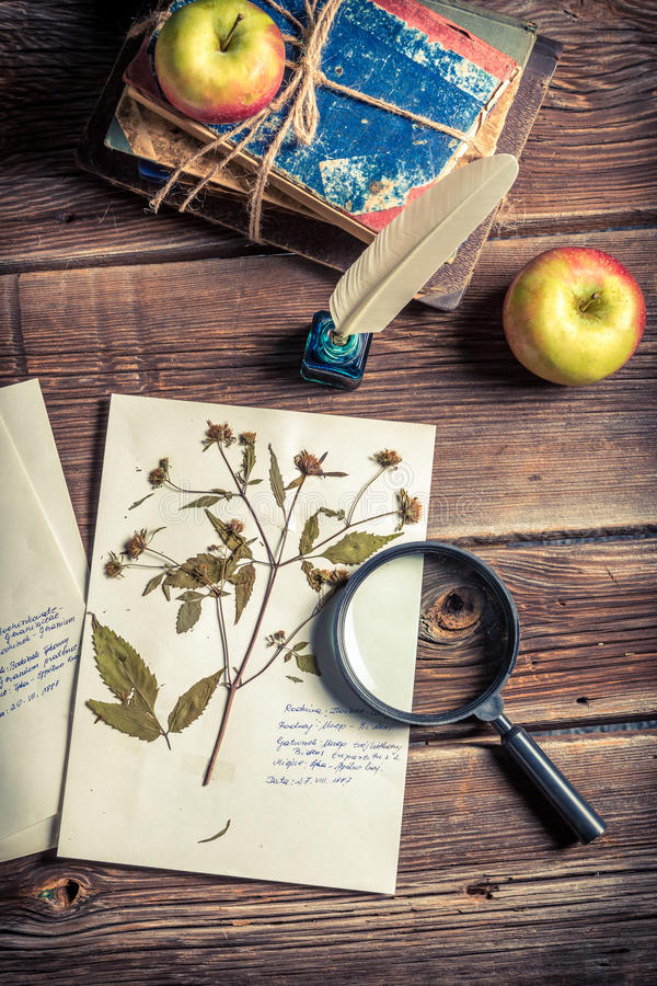 Lesson biology of photosynthesis. On old wooden table royalty free stock images