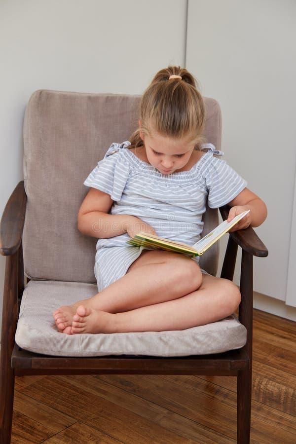 Lesung des kleinen Mädchens, die im Stuhl sitzt lizenzfreies stockfoto