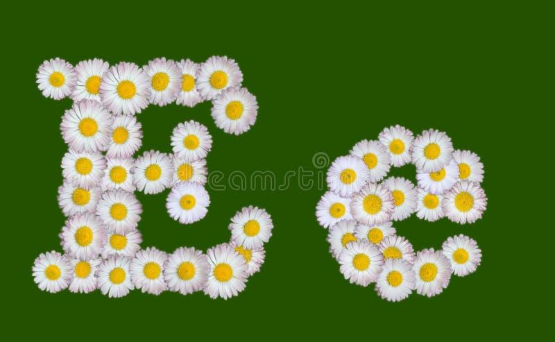 Letra alfabética feita das flores ilustração do vetor